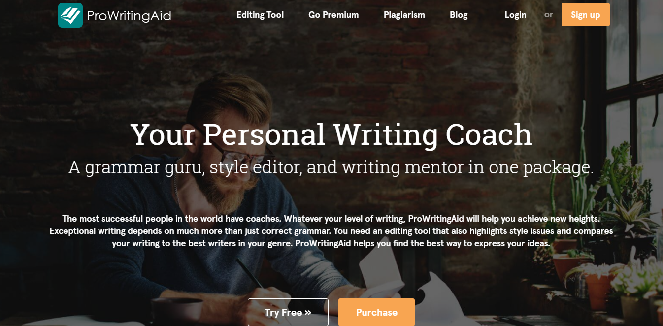 Write Correct English with ProWriting Aid