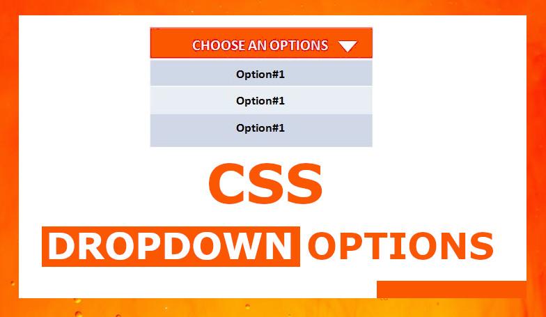 CSS Dropdown Option